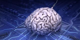 cerebro 2_w21mercurion
