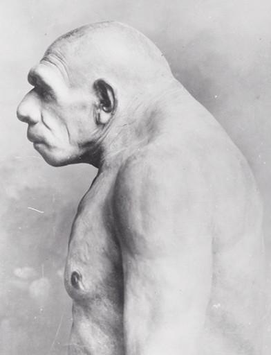 Neanderthal_w21mercurion07